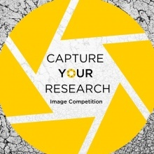 Capture Your Research Q&A Session promotional image